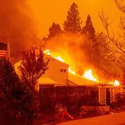 Californie : 59 morts et 130 disparus dans les incendies