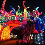 Succès pour les animaux fantastiques qui illuminent le Jardin des Plantes à Paris