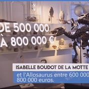 Dinosaures : la flambée des prix des squelettes inquiète les scientifiques
