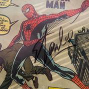 Spider-Man, Venom, Punisher ... 100.000 dollars de comics dérobés à Las Vegas