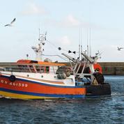 Brexit : comment Bruxelles compte venir en aide aux pêcheurs français