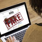 Bruxelles espère distinguer «fake news» et rhétorique politique