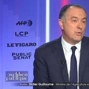 Didier Guillaume: «L'extrême droite et l'extrême gauche ont pris le dessus sur les gilets jaunes»