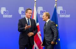David Cameron et Donald Tusk au Conseil européen
