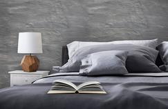 La literie est le segment qui tire le plus le marché du meuble (+4,1% en 2015, à 1,24 milliard d'euros).