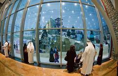 Le dôme de ski de Dubaï, installé dansla galerie commerciale Mall Emirates. Ici, on dévale une piste dans la poudreuse grâce, notamment, à Veolia et à sa filiale Enova.