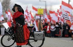 Une femme habillée dans le costume traditionnel alsacien, en protestation contre la réforme territoriale le 13 décembre 2014.