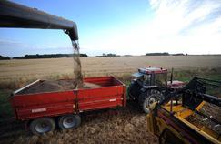 Une exploitation agricole dans l'Indre.
