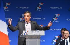 François Fillon au cours d'un meeting, le 2 avril dernier.