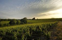 La Fédération des grands vins de Bordeaux (FGVB) et l'Institut national des appellations d'origine (Inao), parties civiles, ont demandé des amendes de respectivement 300.000 et 150.000euros de dommages et intérêts.
