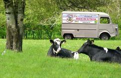 Grâce aux dons surInternet, quatre agriculteurs associés ont pu acheterun camion afin de vendre leurs glaces fermières sur les marchés.