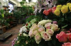 Les fleuristes songent à adapter la composition des bouquets pour la Fête des Mères