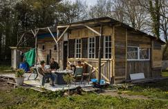 Une cabane occupée par des zadistes