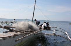 Des pêcheurs de l'île de Guindacpan aux Philippines rentrent bredouilles de la pêche aux calamars.