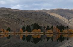 Paysage de Nouvelle-Zélande, crédit: flickr sous licence creative commons
