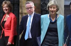 Cinq candidats sont déjà en lice pour prendre la suite de David Cameron, le premier ministre démissionnaire depuis le référendum sur le Brexit.