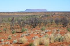 Vue du mont Conner, en Australie.