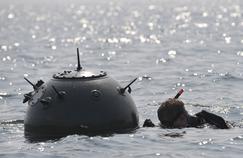 La lutte antimines est un sujet crucial pour les deux pays, qui ont de grandes frontières maritimes. Sur les millions de mines larguées par l'Allemagne pendant la Seconde Guerre mondiale, quelque 300.000 sont encore immergées.