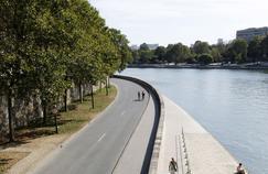 Vue du pont Sully (IVe), une partie de la voie sur berge rendue auxpiétons de Paris.