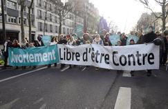 Manifestation contre l'avortement, le 25 janvier 2015 à Paris.