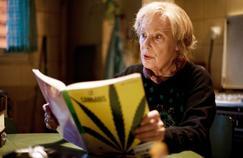 Connaissez-vous (vraiment) les expressions de votre grand-mère ?