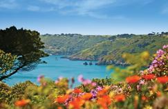 Sur l'île de Guernesey, les jardins hauts en couleurs rivalisent de beauté.