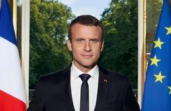 Portrait officiel : «Emmanuel Macron transmet un message d'action»