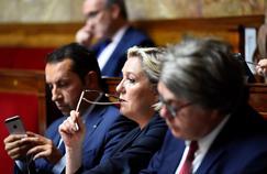 Le FN se lance dans l'exercice risqué de la consultation de ses adhérents