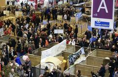 Salon de l'agriculture: les 5 stands où s'attarder