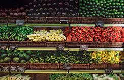 Les Américains gaspillent 150.000 tonnes de nourriture par jour