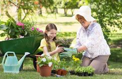 Expressions fran aises courantes origines et significations - Il faut cultiver notre jardin analyse ...