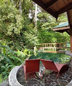 Des piscines privatives au coeur de la jungle