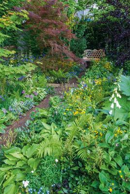 Dans ce jardin légèrement ombragé conçu par Chris Beardshaw, fougères et digitales côtoient des hostas et un érable du Japon.