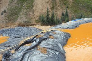 L'eau polluée de la mine d'or s'est déversée dans la vallée, entraînant la pollution des cours d'eau.