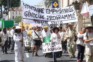 Manifestation d'apiculteurs en juin 2014 à Perpignan.