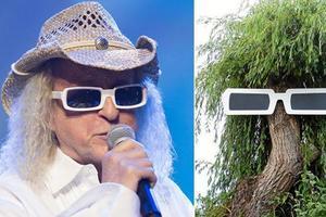 David Porsmoguer a posé une paire de lunettes géante sur l'arbre de la place de Pont-l'Abbé.