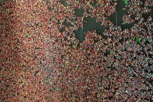 Le lavage des grains cueillis à la plantation Dokka