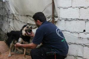 Mohammad Alaa Jaleel et le chien 'Hope'
