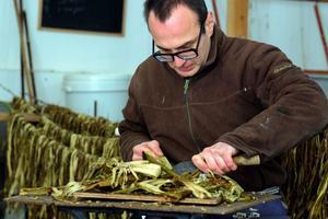 Benoît en train de nettoyer l'écorce du mûrier avec son couteau afin d'extraire les fibres pour faire du washi. .
