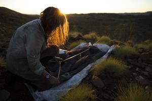 Après avoir trouvé l'endroit idéal pour dormir, c'est l'heure de monter la tente.