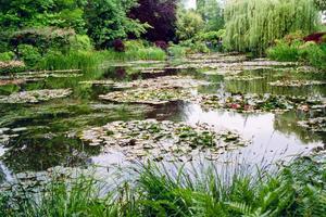 Monet y peint <i> Les Nymphéas</i>.