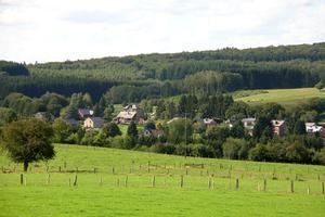 La forêt de Saint-Hubert, un massif particulièrement bien préservé.