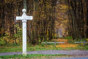 Les emblématiques poteaux de carrefour de la forêt de Compiègne, un moyen de se repérer parmi les 1000 km de sentiers du massif.