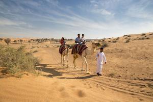 On vous conseille d'appréhender le désert de dunes rousses de la manière la plus traditionnelle qui soit, à dos de chameau.