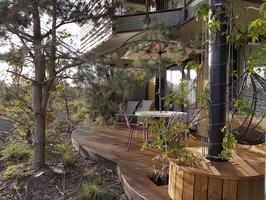 Appartement du village avec sa terrasse arborée.