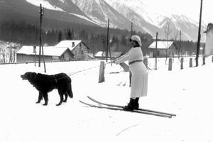 Partie de ski à chien à Chamonix Mont-Blanc vers 1930.