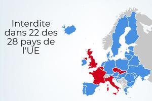 Les six pays en rouge n'ont pas de loi interdisant totalement les violences.
