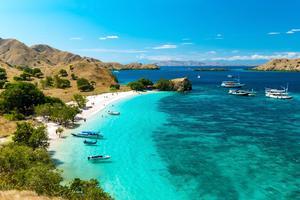 L'île de Komodo, Pink Beach, Flores - Indonésie