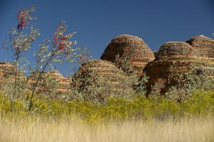 Les étranges formations géologiques de Bungle Bungle Range
