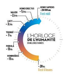 L'horloge de l'humanité, en millions d'années.